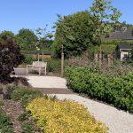 Woonzorgcentrum-langerheide-haacht-tuin-bloemen
